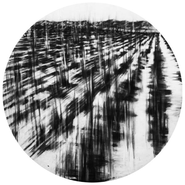 """Caterina Sbrana // """"On Landscape with Vine Black"""" 2016 // Materia Prima Collection"""